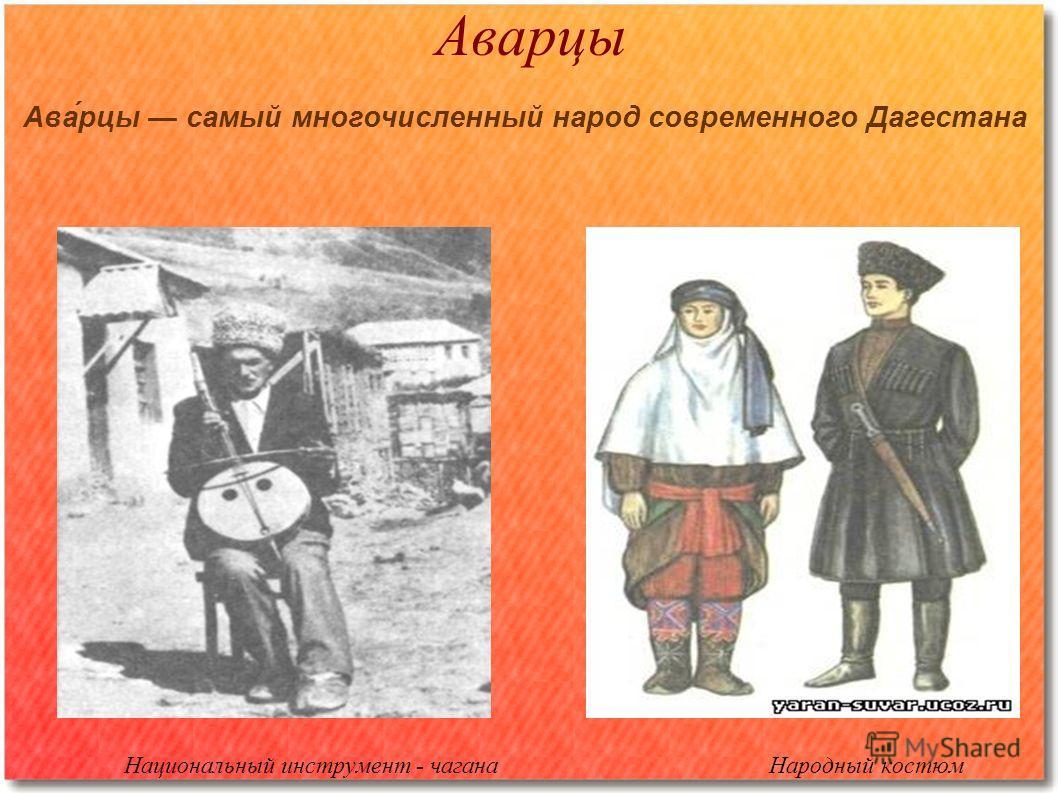 Аварцы Национальный инструмент - чагана Народный костюм Ава́рцы самый многочисленный народ современного Дагестана