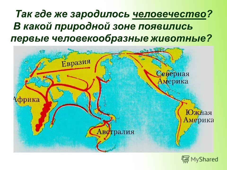 Так где же зародилось человечество? В какой природной зоне появились первые человекообразные животные?