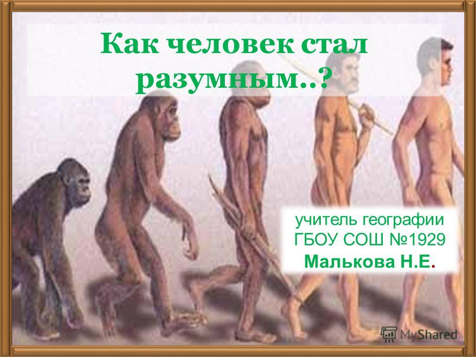 учитель географии ГБОУ СОШ 1929 Малькова Н.Е. Как человек стал разумным..?