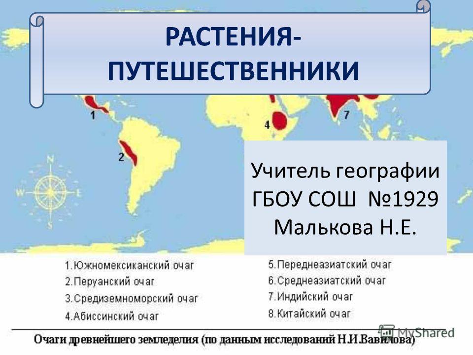 РАСТЕНИЯ- ПУТЕШЕСТВЕННИКИ Учитель географии ГБОУ СОШ 1929 Малькова Н.Е.