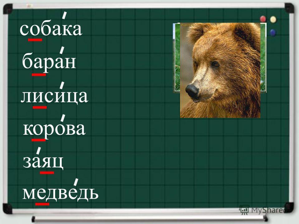 собака баран лисица корова заяц медведь