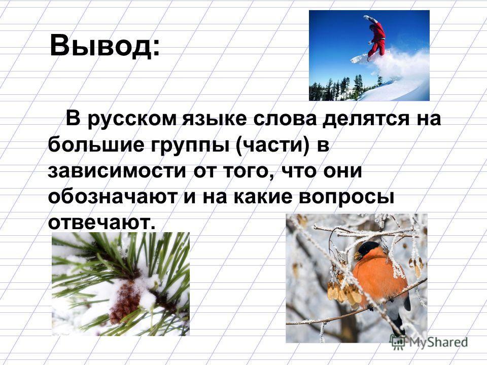 Вывод: В русском языке слова делятся на большие группы (части) в зависимости от того, что они обозначают и на какие вопросы отвечают.