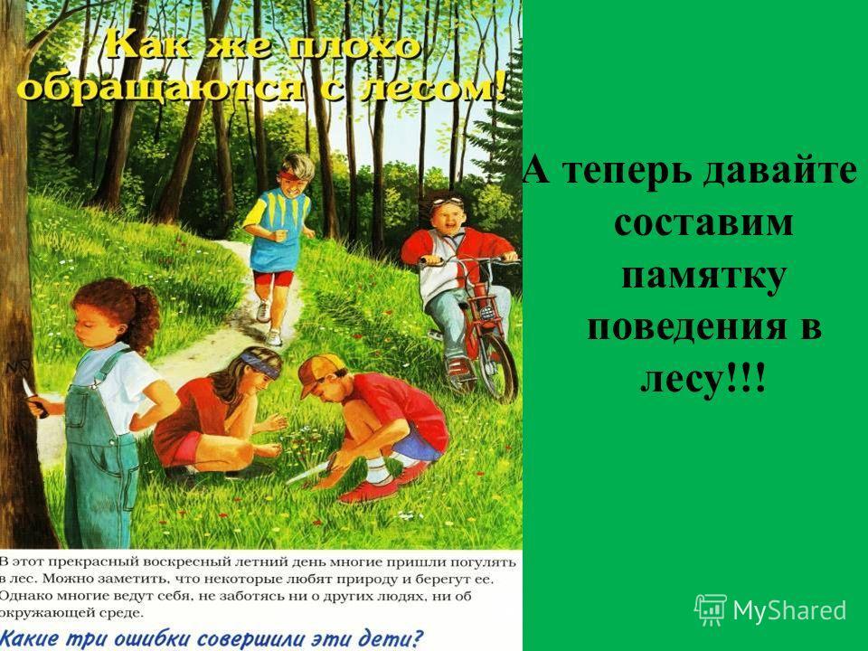 А теперь давайте составим памятку поведения в лесу!!!