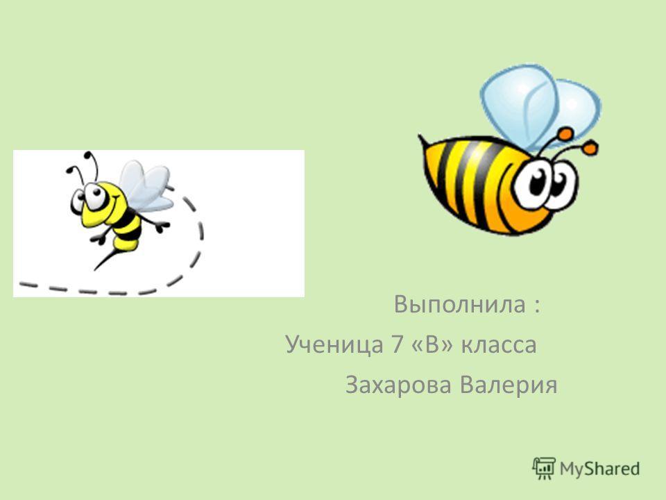 Выполнила : Ученица 7 «В» класса Захарова Валерия