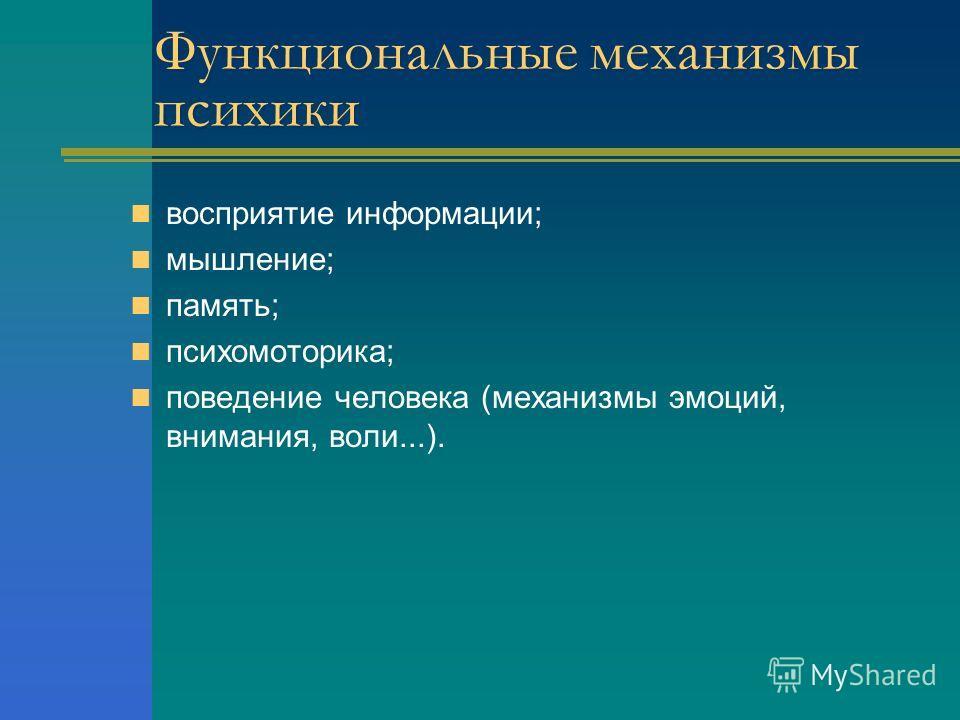 восприятие информации; мышление; память; психомоторика; поведение человека (механизмы эмоций, внимания, воли...). Функциональные механизмы психики