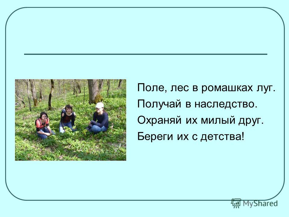 Поле, лес в ромашках луг. Получай в наследство. Охраняй их милый друг. Береги их с детства!