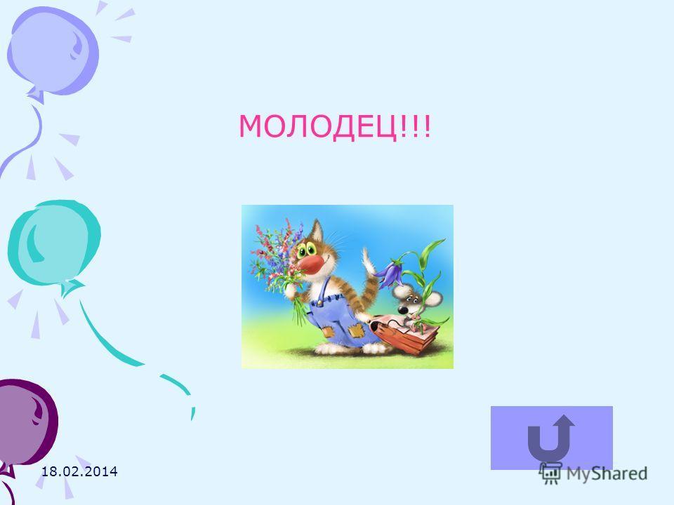 18.02.2014 МОЛОДЕЦ!!!