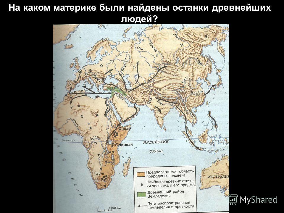 На каком материке были найдены останки древнейших людей?