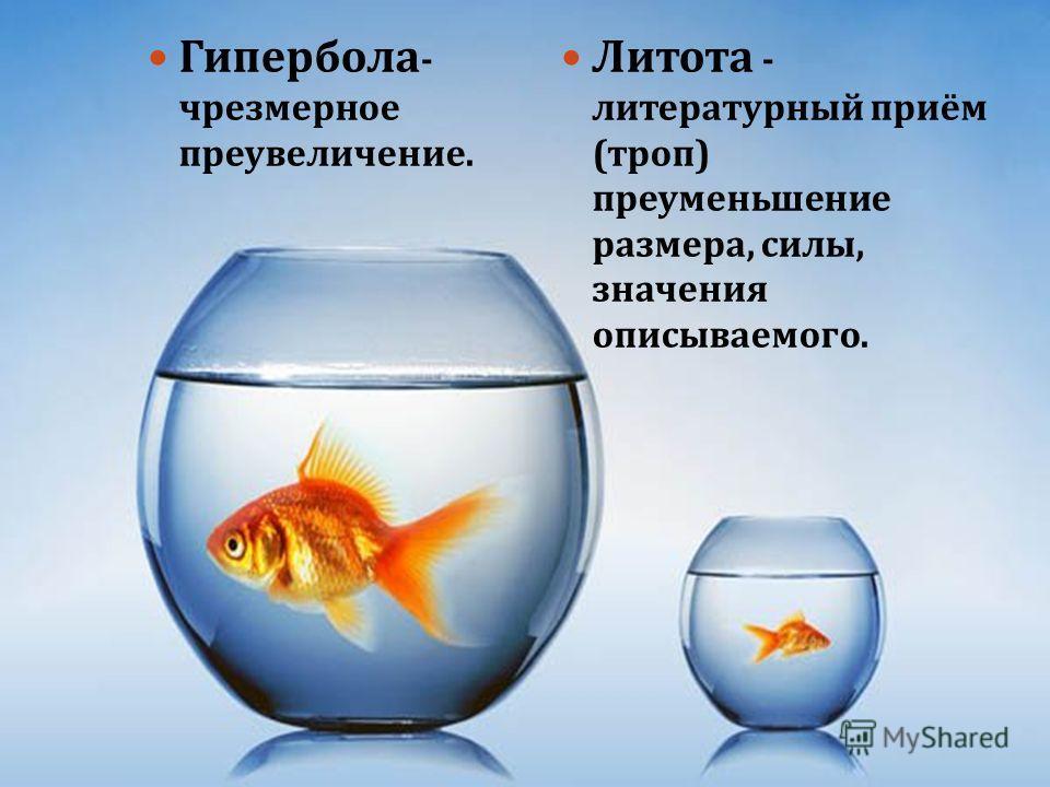 Гипербола - чрезмерное преувеличение. Литота - литературный приём ( троп ) преуменьшение размера, силы, значения описываемого.