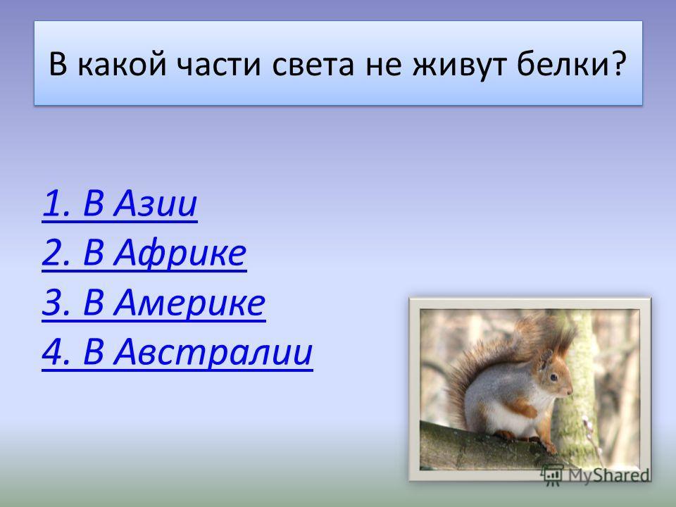 «Братья наши меньшие» Вы набрали восемь баллов. Ваши знания о животных пока невелики. Попробуйте ещё! Удачи! Вы набрали восемь баллов. Ваши знания о животных пока невелики. Попробуйте ещё! Удачи!