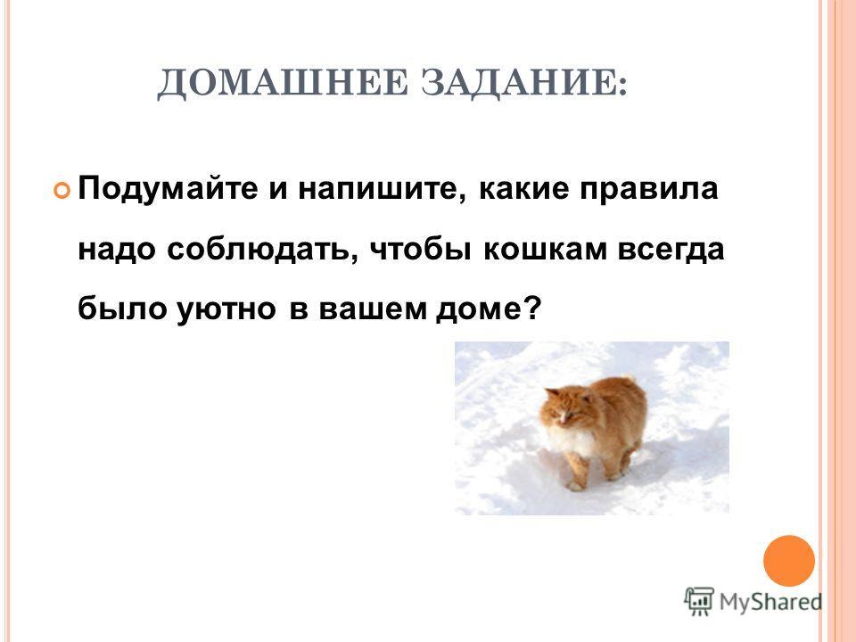 ДОМАШНЕЕ ЗАДАНИЕ: Подумайте и напишите, какие правила надо соблюдать, чтобы кошкам всегда было уютно в вашем доме?