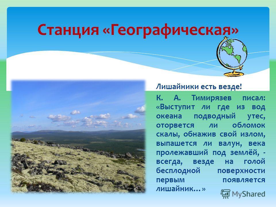 Станция «Географическая» Лишайники есть везде! К. А. Тимирязев писал: «Выступит ли где из вод океана подводный утес, оторвется ли обломок скалы, обнажив свой излом, выпашется ли валун, века пролежавший под землёй, - всегда, везде на голой бесплодной