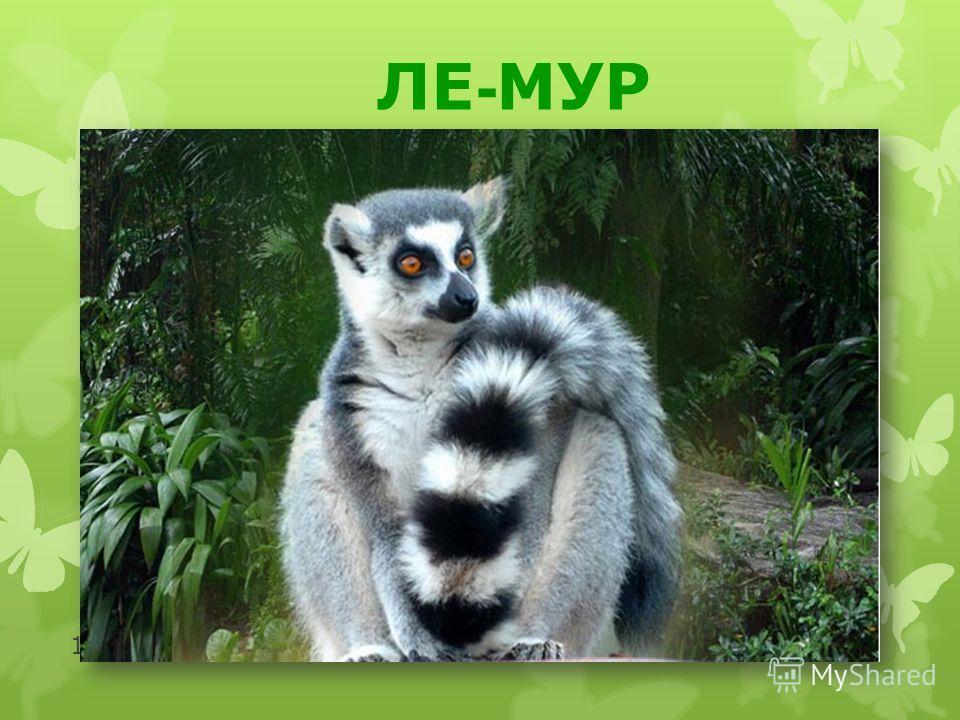 http://moidomi-ki.ru/ 10 ЛЕ - МУР