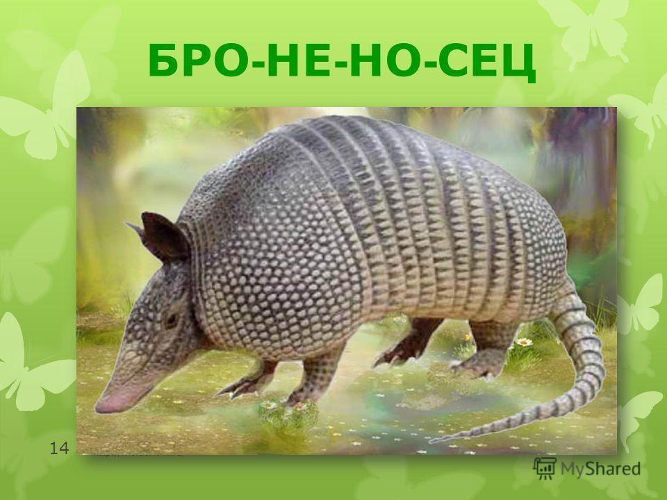http://moidomi-ki.ru/ 14 БРО - НЕ - НО - СЕЦ