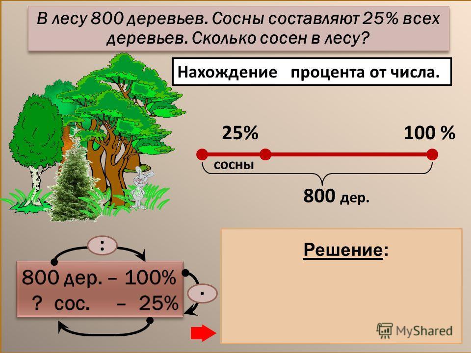 Нахождение процента от числа. 1) 800 : 100 = 8 (дер.) – 1% дер. 2) 8. 25 = 200 (дер.) – сосны Ответ: 200 сосен. :. Решение: В лесу 800 деревьев. Сосны составляют 25% всех деревьев. Сколько сосен в лесу? 25%100 % сосны 800 дер.