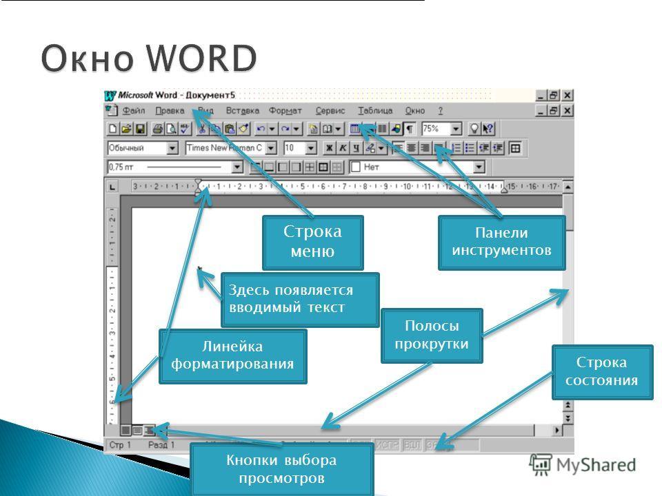 Здесь появляется вводимый текст Строка меню Панели инструментов Линейка форматирования Кнопки выбора просмотров Строка состояния Полосы прокрутки