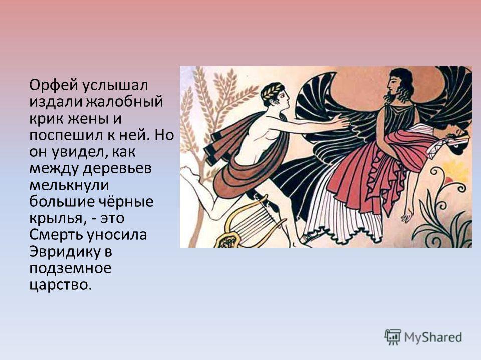 Орфей услышал издали жалобный крик жены и поспешил к ней. Но он увидел, как между деревьев мелькнули большие чёрные крылья, - это Смерть уносила Эвридику в подземное царство.