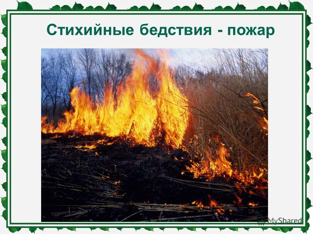 Стихийные бедствия - пожар Собенина Н.А., ГО Верхняя Тура