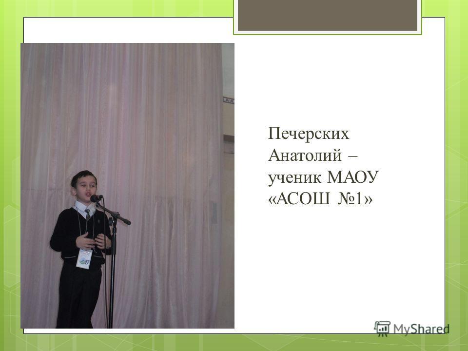 Печерских Анатолий – ученик МАОУ «АСОШ 1»