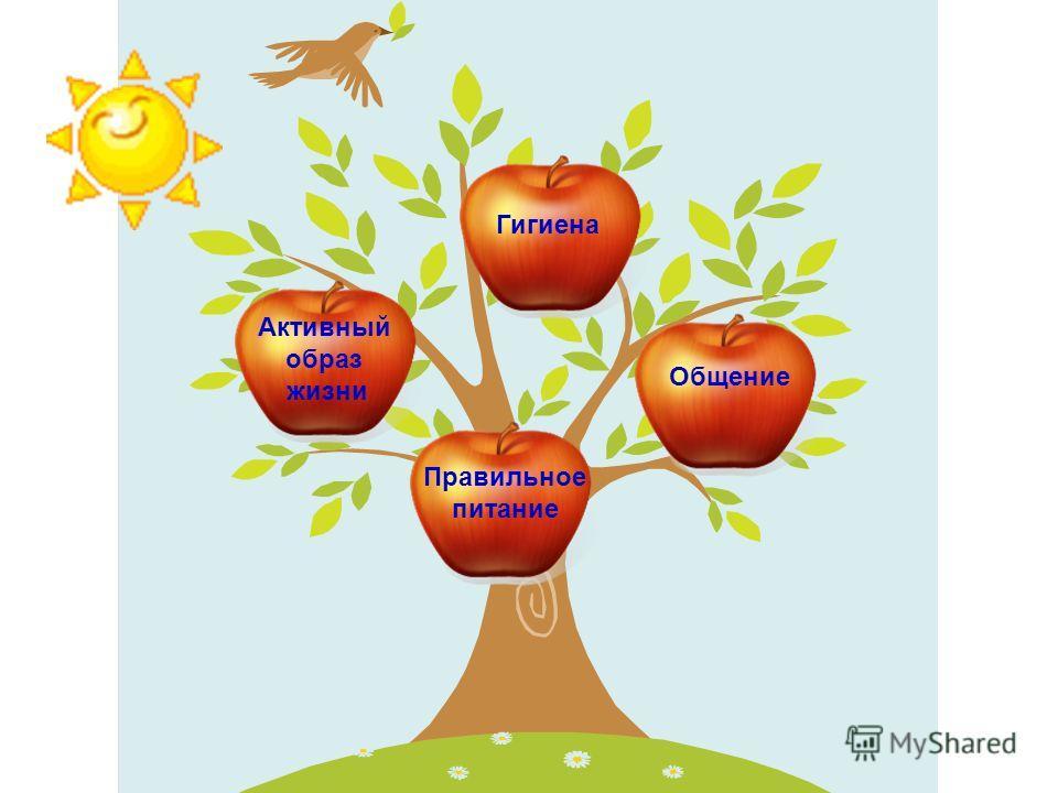 Активный образ жизни Общение Гигиена Правильное питание