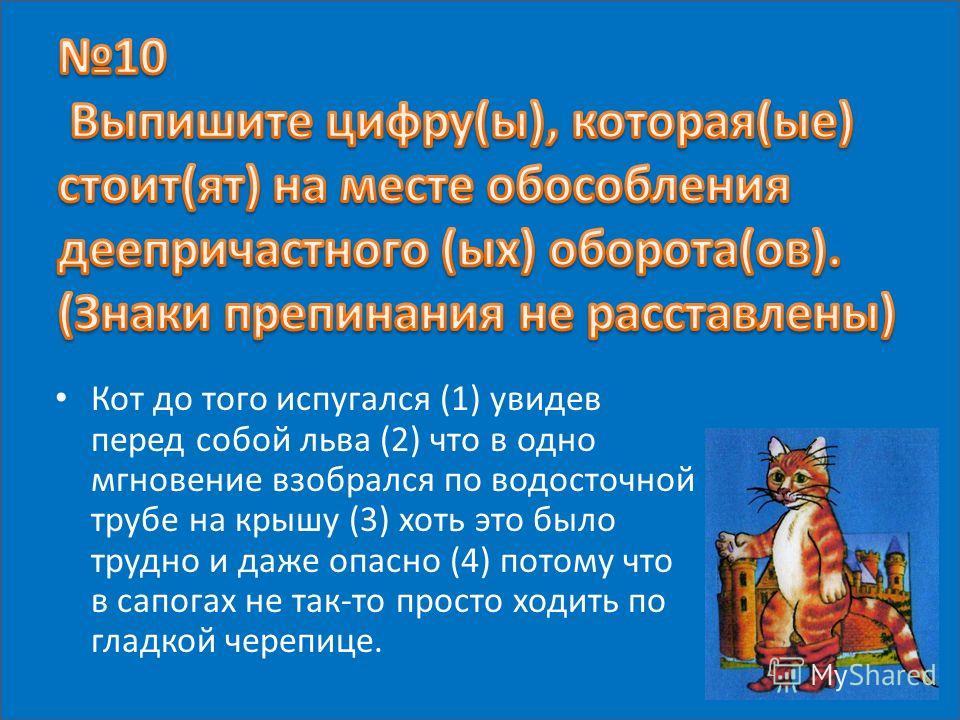 Кот до того испугался (1) увидев перед собой льва (2) что в одно мгновение взобрался по водосточной трубе на крышу (3) хоть это было трудно и даже опасно (4) потому что в сапогах не так-то просто ходить по гладкой черепице.