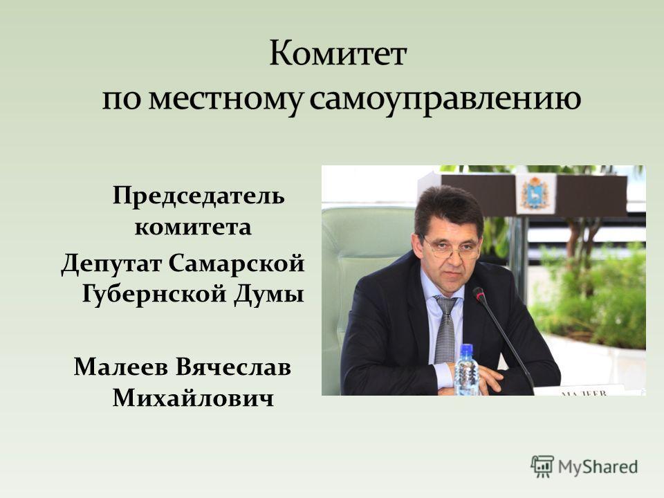 Председатель комитета Депутат Самарской Губернской Думы Малеев Вячеслав Михайлович