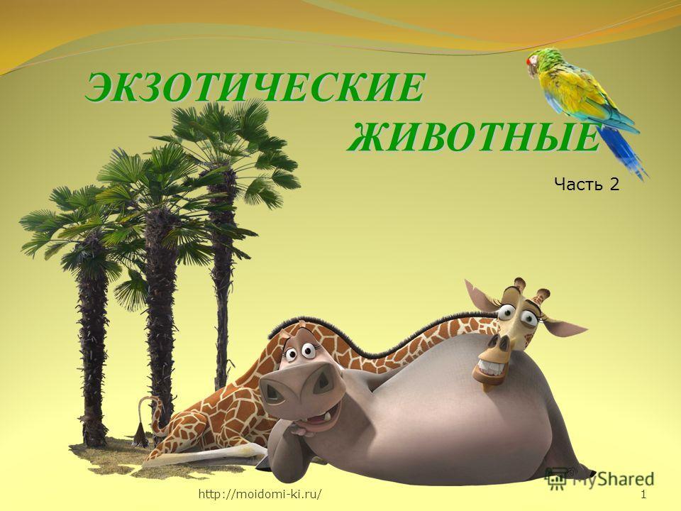 http://moidomi-ki.ru/ 1 ЭКЗОТИЧЕСКИЕЖИВОТНЫЕ Часть 2