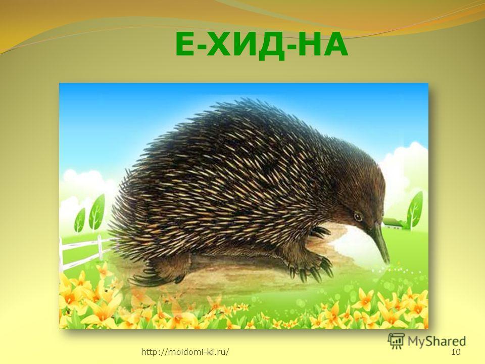 http://moidomi-ki.ru/ 10 Е - ХИД - НА