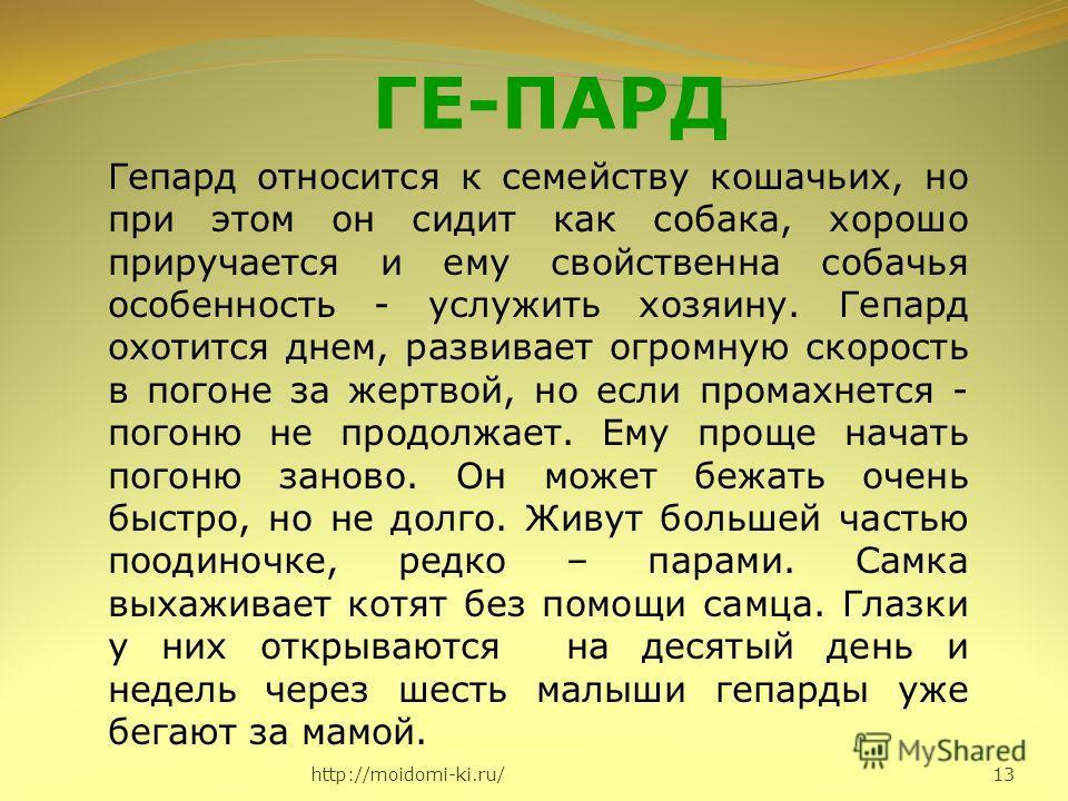 http://moidomi-ki.ru/ 13 ГЕ-ПАРД Гепард относится к семейству кошачьих, но при этом он сидит как собака, хорошо приручается и ему свойственна собачья особенность - услужить хозяину. Гепард охотится днем, развивает огромную скорость в погоне за жертво