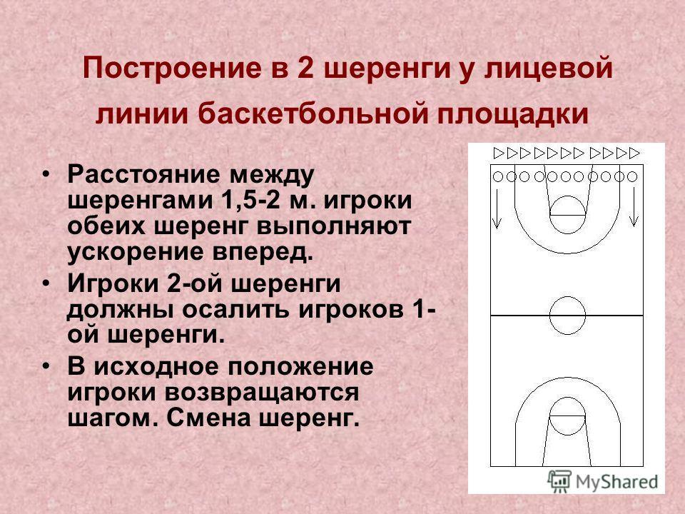 Построение в 2 шеренги у лицевой линии баскетбольной площадки Расстояние между шеренгами 1,5-2 м. игроки обеих шеренг выполняют ускорение вперед. Игроки 2-ой шеренги должны осалить игроков 1- ой шеренги. В исходное положение игроки возвращаются шагом
