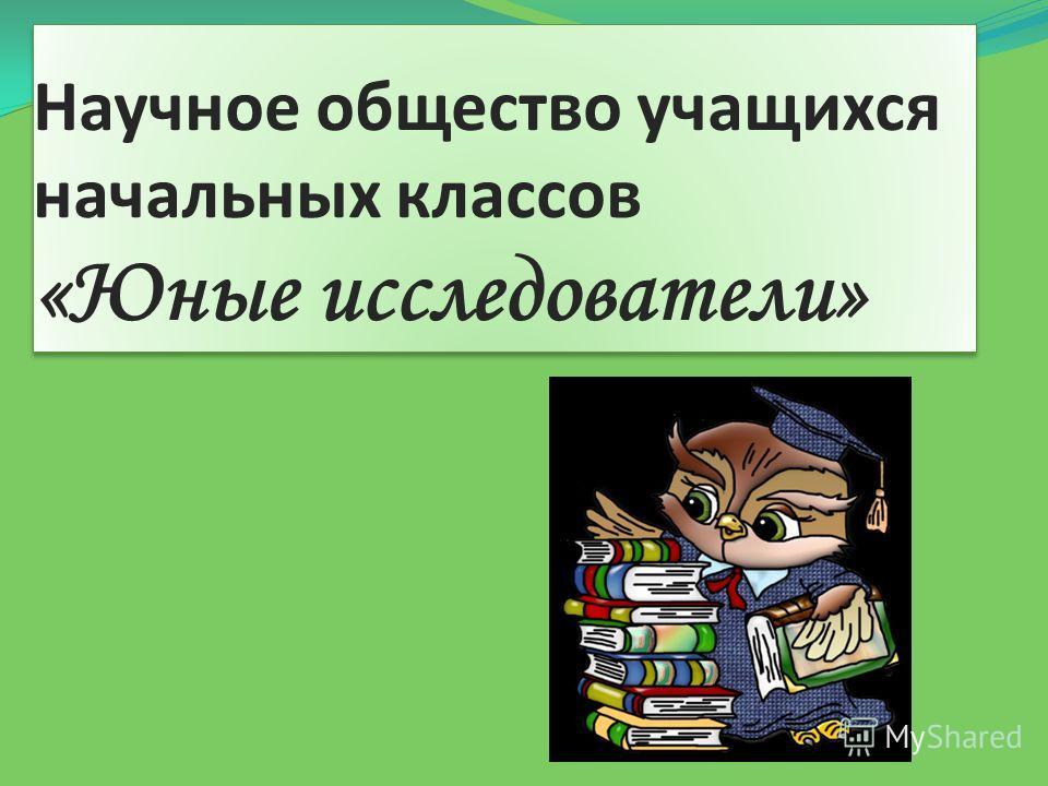 Научное общество учащихся начальных классов «Юные исследователи»