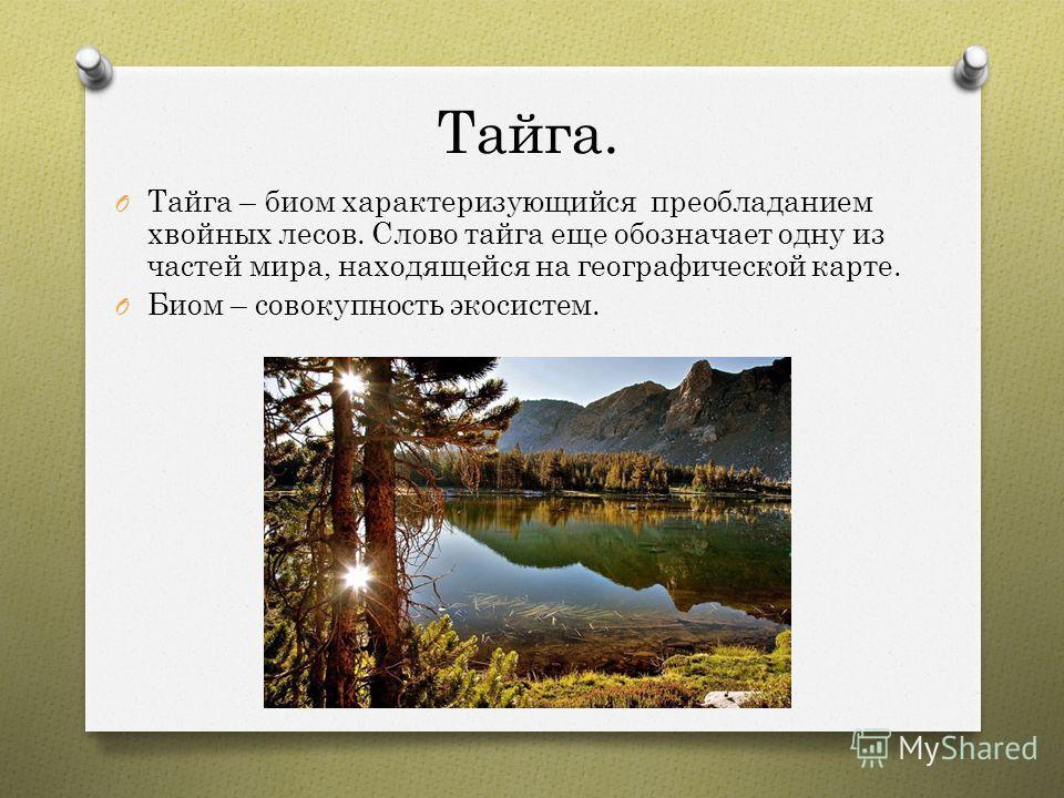 Тайга. O Тайга – биом характеризующийся преобладанием хвойных лесов. Слово тайга еще обозначает одну из частей мира, находящейся на географической карте. O Биом – совокупность экосистем.