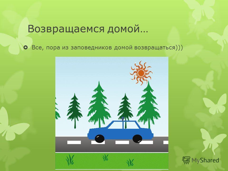 Возвращаемся домой… Все, пора из заповедников домой возвращаться)))