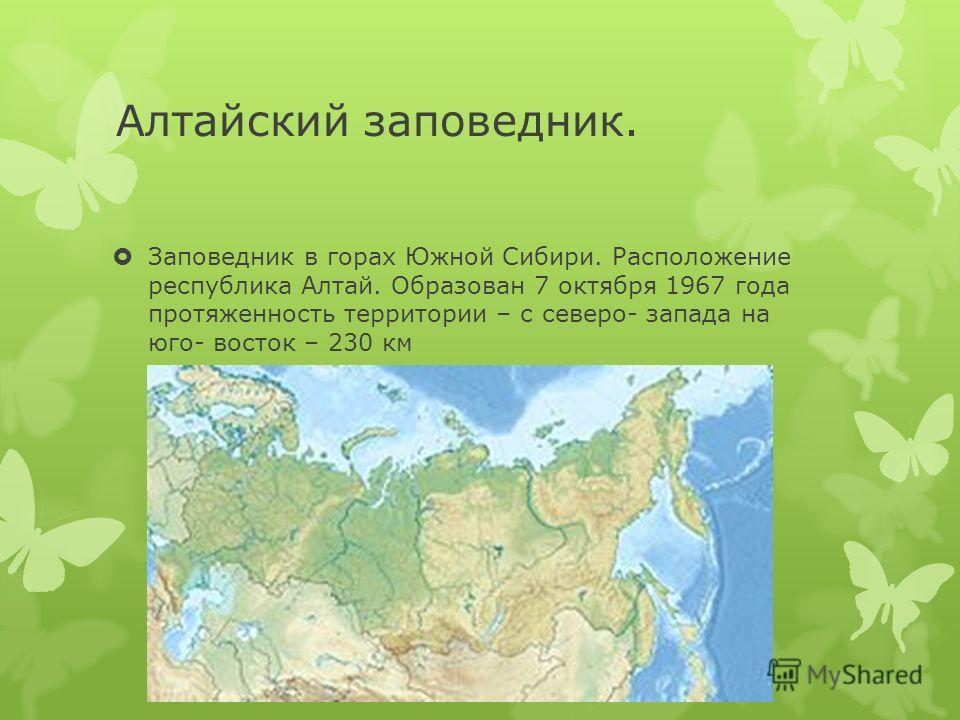 Алтайский заповедник. Заповедник в горах Южной Сибири. Расположение республика Алтай. Образован 7 октября 1967 года протяженность территории – с северо- запада на юго- восток – 230 км