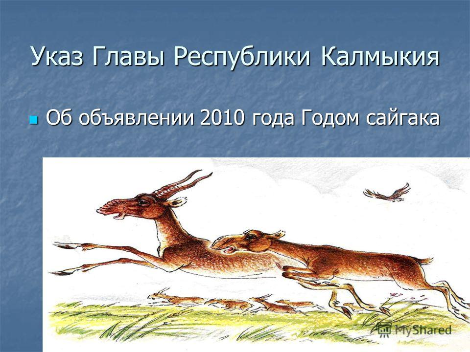 Указ Главы Республики Калмыкия Об объявлении 2010 года Годом сайгака Об объявлении 2010 года Годом сайгака