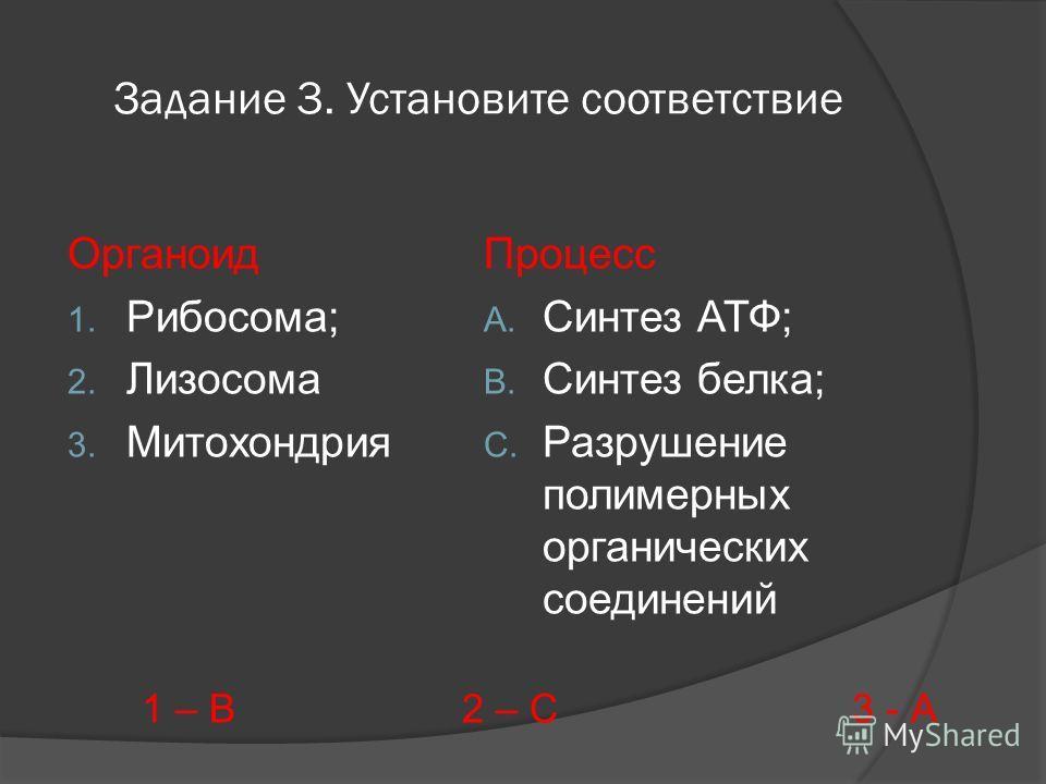 Задание 3. Установите соответствие Органоид 1. Рибосома; 2. Лизосома 3. Митохондрия Процесс A. Синтез АТФ; B. Синтез белка; C. Разрушение полимерных органических соединений 1 – В 2 – С 3 - А