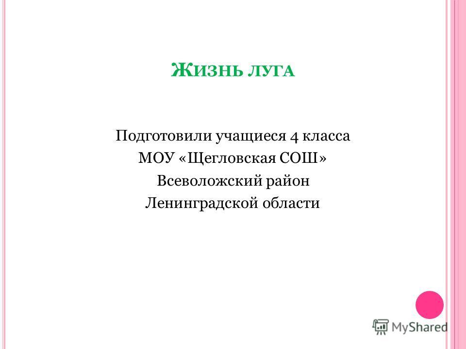 Подготовили учащиеся 4 класса МОУ «Щегловская СОШ» Всеволожский район Ленинградской области
