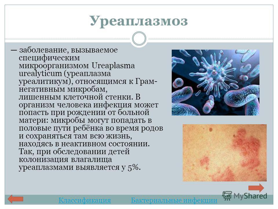 Микоплазмоз и уреаплазмоз при беременности - Все самое интересное и полезное Eos-stroi.ru