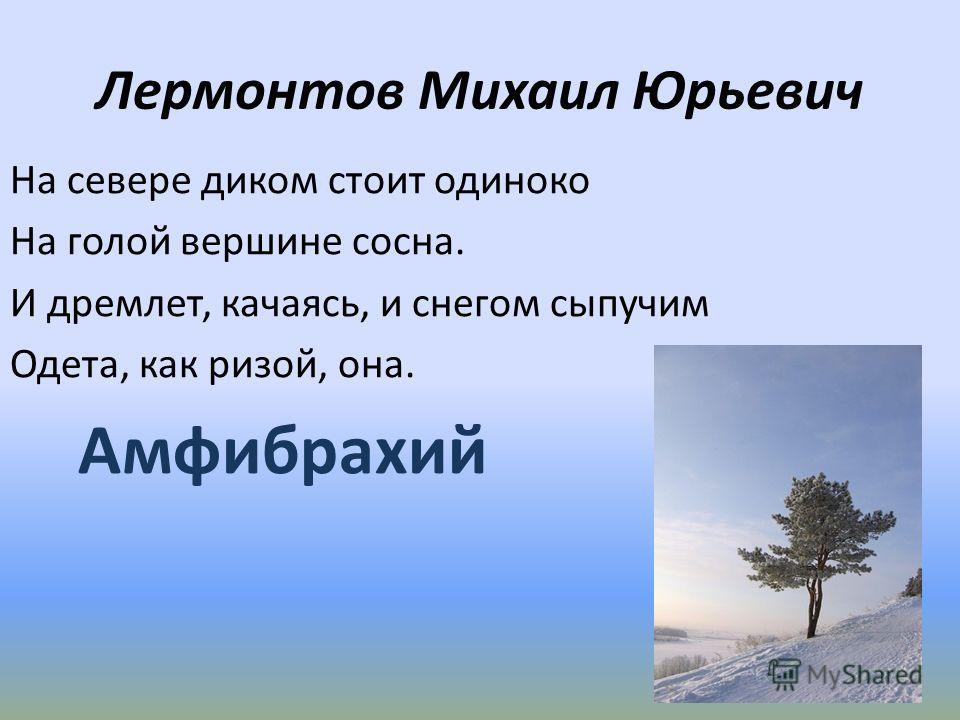 Лермонтов Михаил Юрьевич На севере диком стоит одиноко На голой вершине сосна. И дремлет, качаясь, и снегом сыпучим Одета, как ризой, она. Амфибрахий