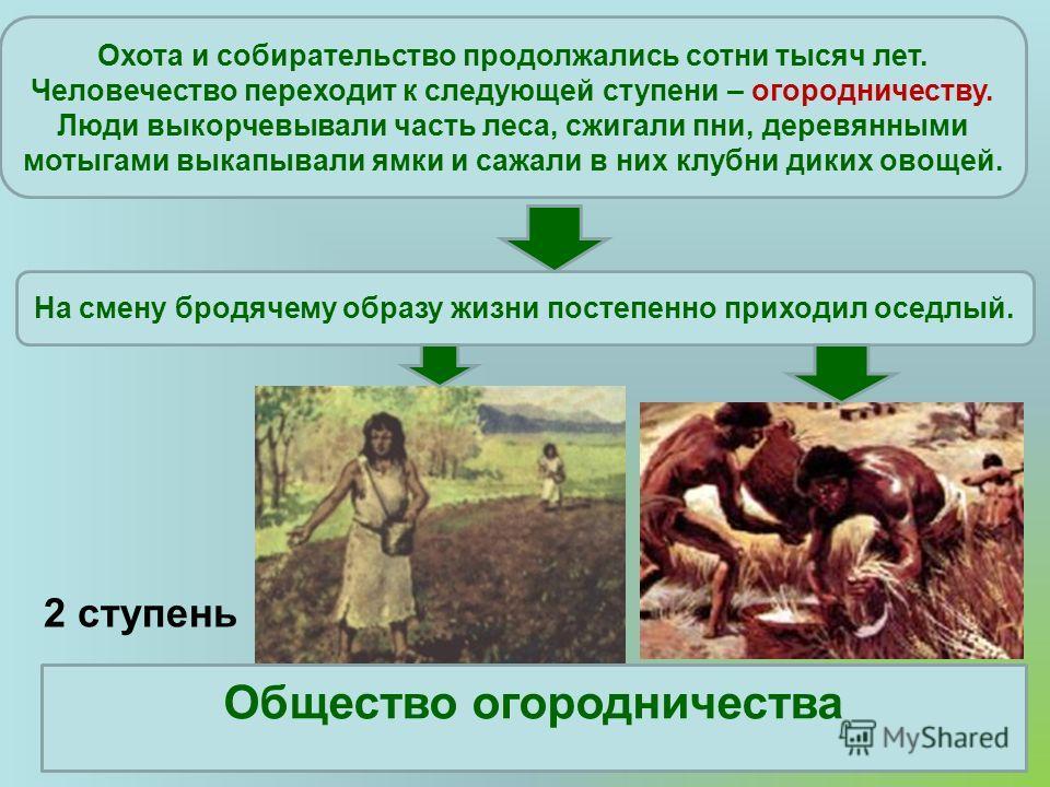 2 ступень Общество огородничества Охота и собирательство продолжались сотни тысяч лет. Человечество переходит к следующей ступени – огородничеству. Люди выкорчевывали часть леса, сжигали пни, деревянными мотыгами выкапывали ямки и сажали в них клубни