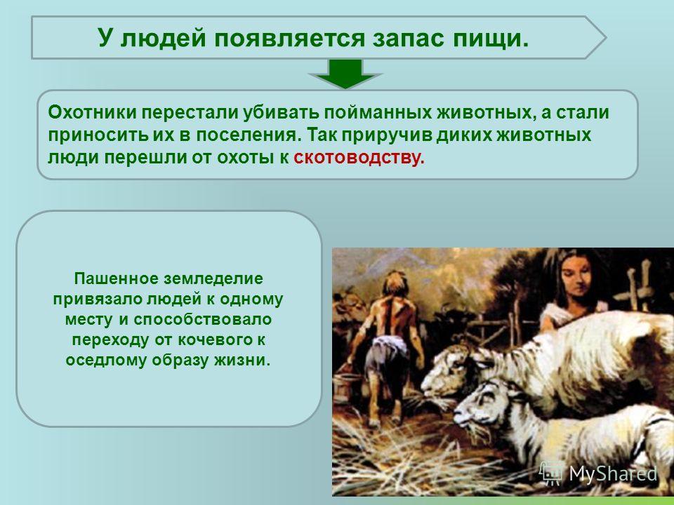 Охотники перестали убивать пойманных животных, а стали приносить их в поселения. Так приручив диких животных люди перешли от охоты к скотоводству. У людей появляется запас пищи. Пашенное земледелие привязало людей к одному месту и способствовало пере