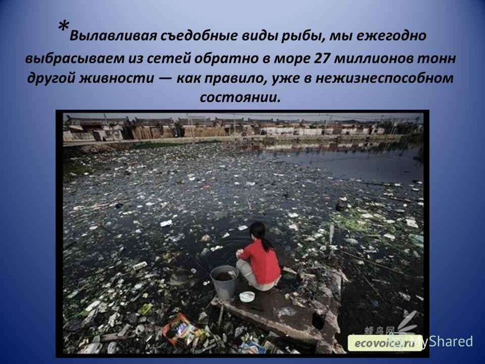 * Вылавливая съедобные виды рыбы, мы ежегодно выбрасываем из сетей обратно в море 27 миллионов тонн другой живности как правило, уже в нежизнеспособном состоянии.