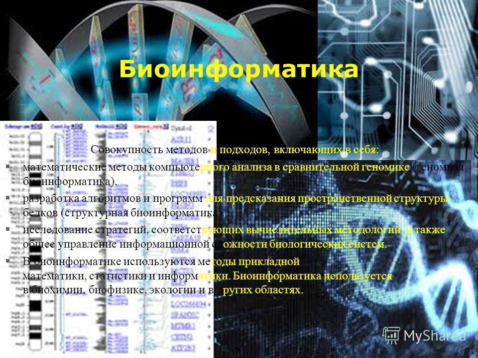 Биоинформатика Совокупность методов и подходов, включающих в себя: математические методы компьютерного анализа в сравнительной геномике (геномная биоинформатика). разработка алгоритмов и программ для предсказания пространственной структуры белков (ст