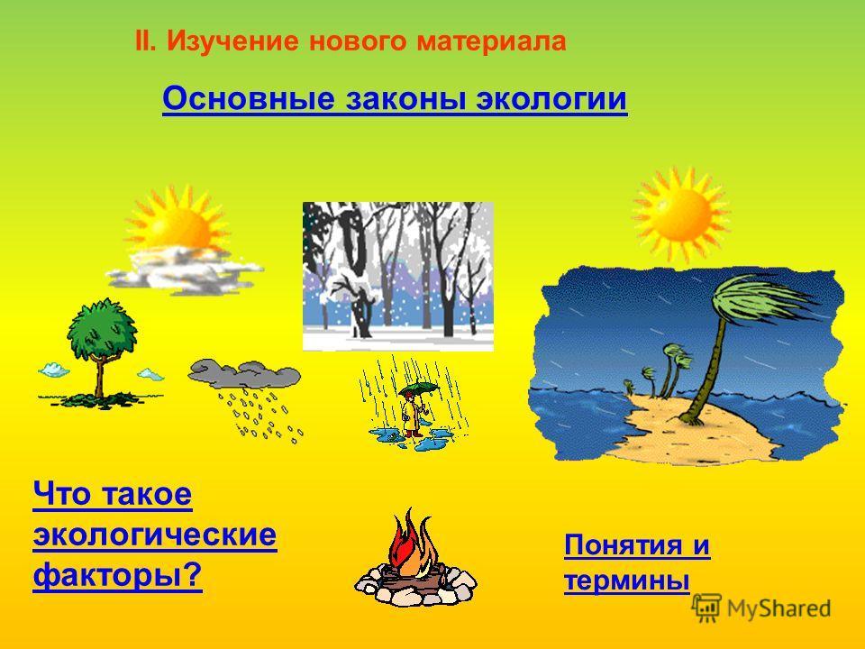 Основные законы экологии II. Изучение нового материала Что такое экологические факторы? Понятия и термины