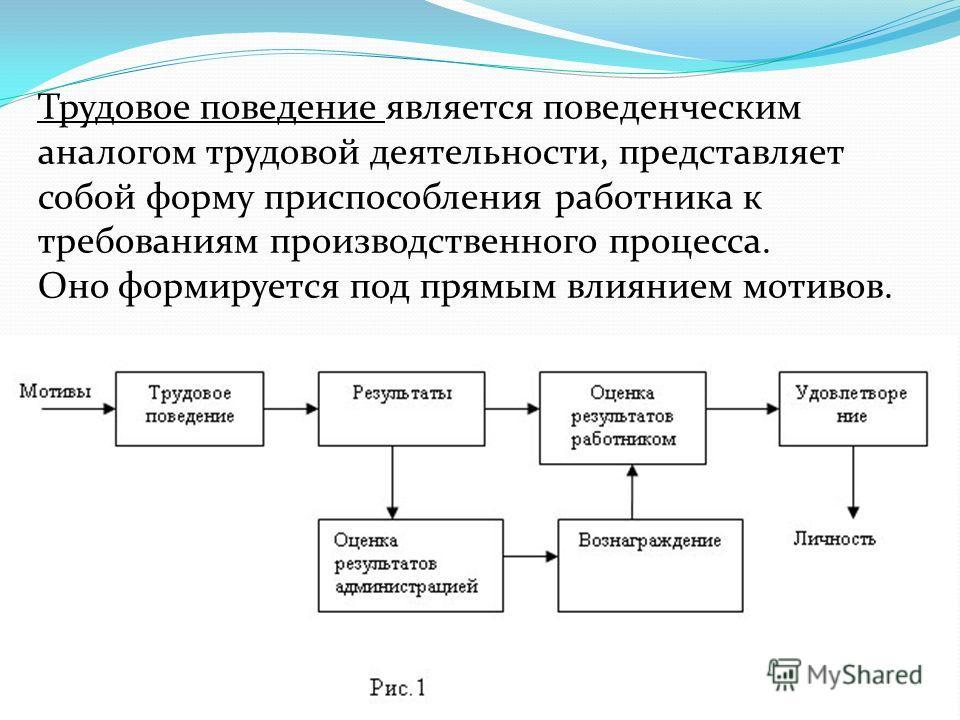 Трудовое поведение является поведенческим аналогом трудовой деятельности, представляет собой форму приспособления работника к требованиям производственного процесса. Оно формируется под прямым влиянием мотивов.