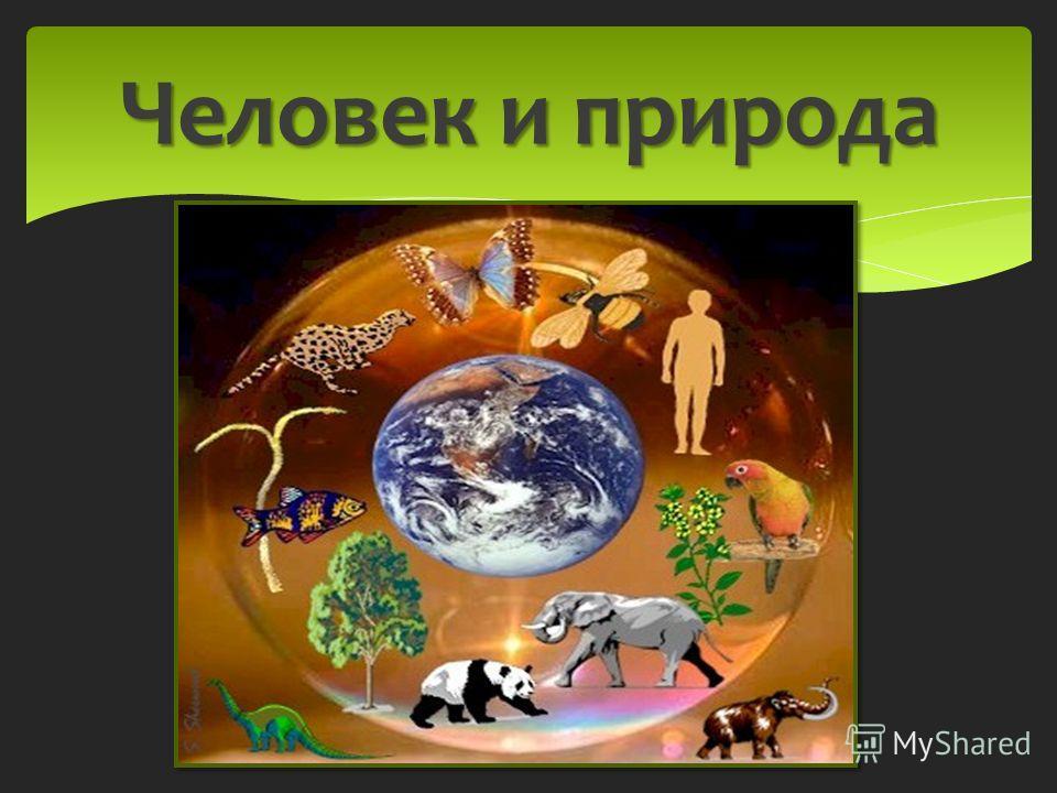 Лес-богатство народа. лес Связь живой и неживой природы Дом животных Дом растениям Лекарство Строительные материалы Защита воздуха, полей и рек