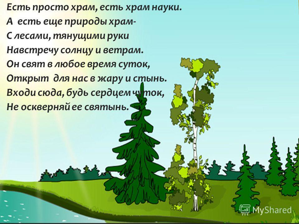 Мир глазами эколога