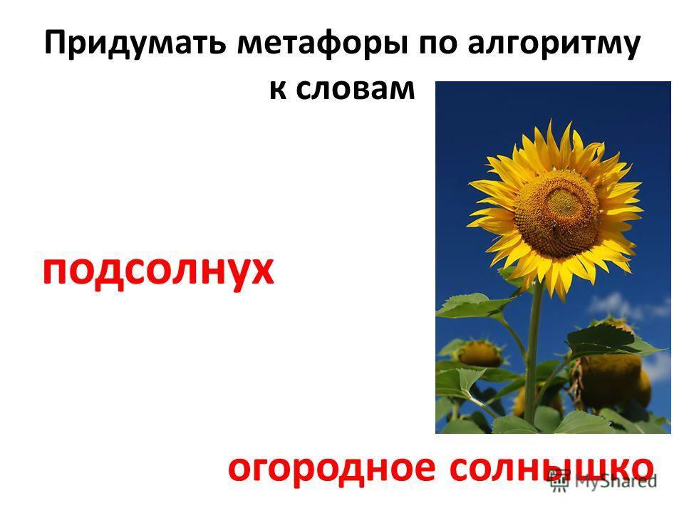 Придумать метафоры по алгоритму к словам подсолнух огородное солнышко