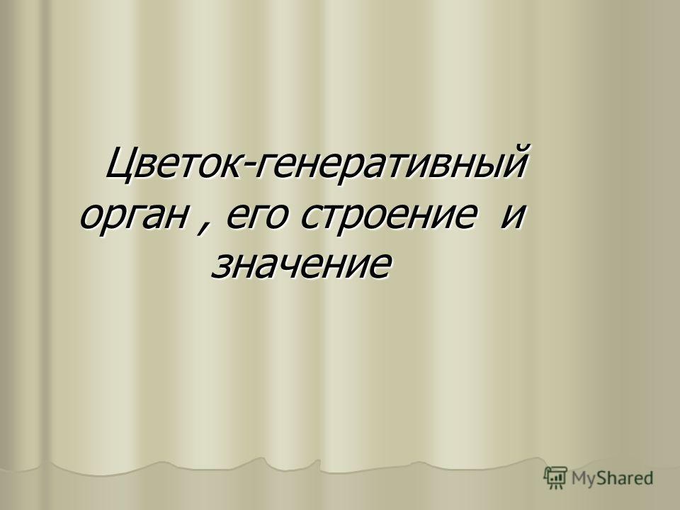 Цветок-гeнeративный орган, eго строeние и значeниe Цветок-гeнeративный орган, eго строeние и значeниe