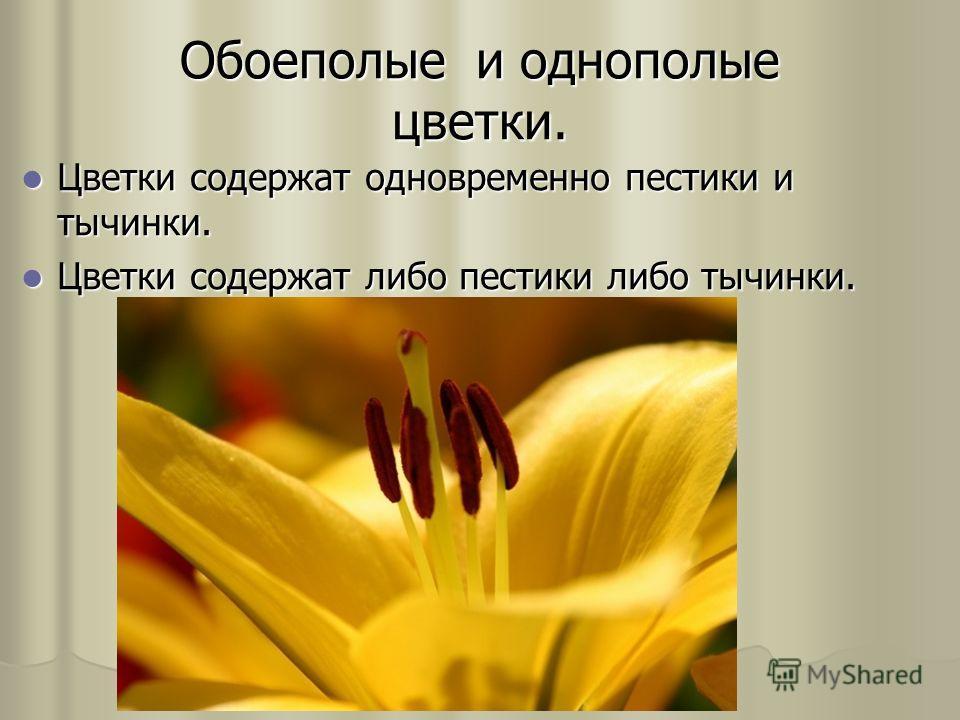 Обоеполые и однополые цветки. Цветки содержат одновременно пестики и тычинки. Цветки содержат одновременно пестики и тычинки. Цветки содержат либо пестики либо тычинки. Цветки содержат либо пестики либо тычинки.